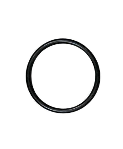 OPW 201972 O-Ring for Visigauge Adaptor