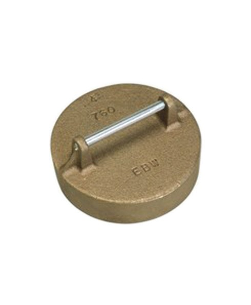 Franklin Fueling 76020131 4'' BSPP Brass Pipe Cap