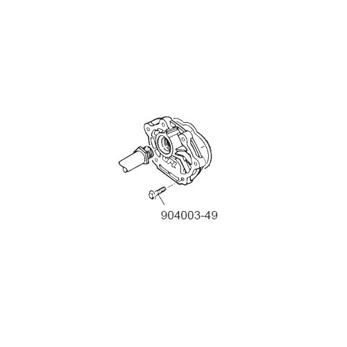 GPI 904003-49 1/4-20 x 1 in. Chemical Sems Screw for P-120H & P-200H 12V Pump