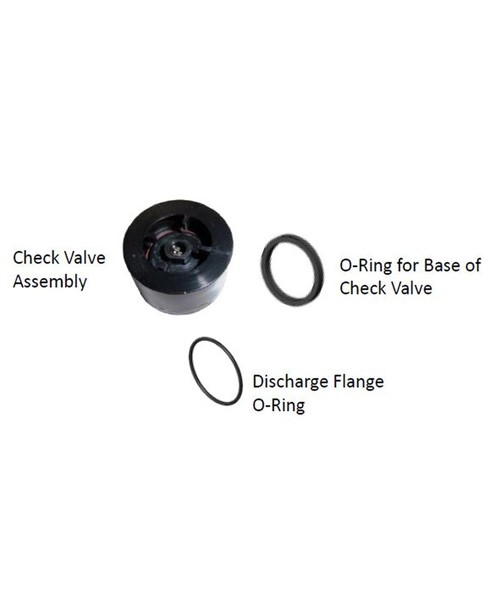 Fill-Rite KIT700CV Check Valve Repair Kit for FR700 Series Pumps
