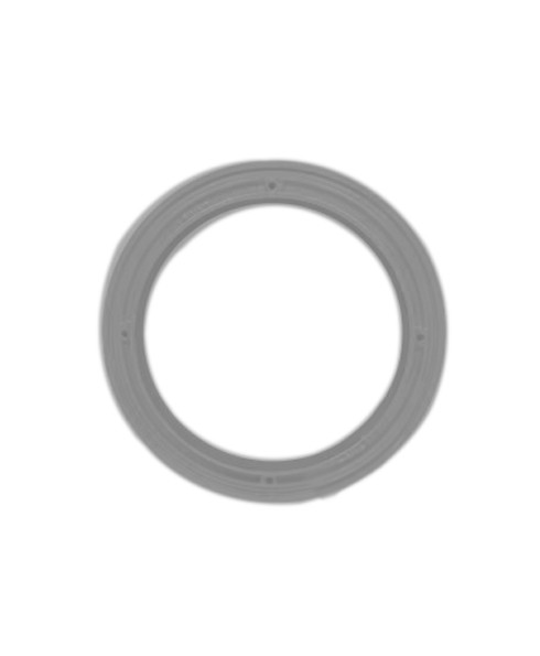 OPW SCR-GRAY 15 Gallon Powder Coated Sealable Ring